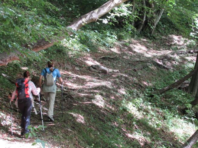 """Margherita e Sandra salgono sul sentiero, """"oltre la linea immaginaria"""""""